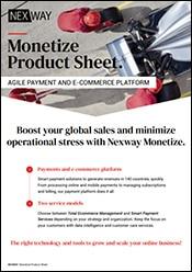 Download brochure: Nexway Monetize